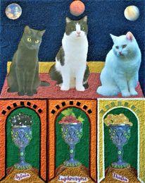 Katze, Mars, Kelch, Venus