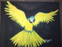 Bunt, Acrylmalerei, Vogel, Tiere