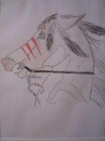 Leben, Pferde, Buntstiftzeichnung, Indianer