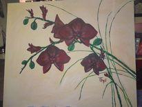 Buntstiftzeichnung, Orchidee, Leben, Farben
