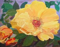 Bramsche, Rose postillion, Blumen, Ölmalerei