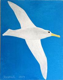 Vogel, Blau, Fliegen, Weiß