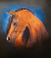 Portrait, Pferde, Malerei, Pastellmalerei