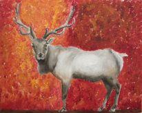 Rot, Geweih, Wildlife artist, Malerei
