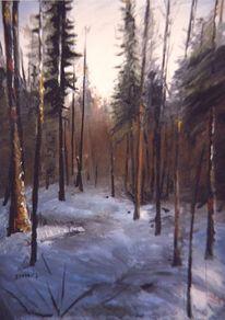 Baum, Winter, Schnee, Kalt