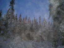 Landschaft, Wald, Fee, Schweden