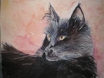 Katze, Main coon, Tiere, Aquarellmalerei