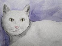 Tiere, Aquarellmalerei, Weiß, Katze