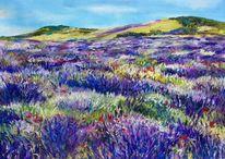 Lavendel, Feld, Pastellmalerei, Malerei