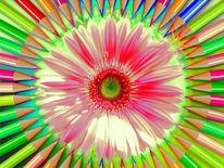 Auge, Blume, Blüte, Outsider
