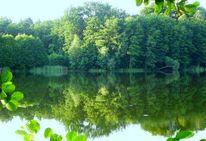 See, Wald, Rangsdorf, Krumme lanke