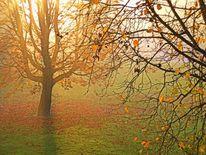 Herbstmorgen, Outsider art, Herbst, Morgen