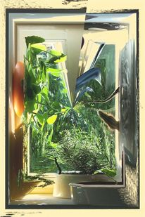 Outsider art, Sommerfenster, Natur, Fotografie