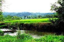 Mindanao, Fotografie, Konzept