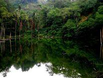 Mindanao, Teich, Outsider art, Fotografie