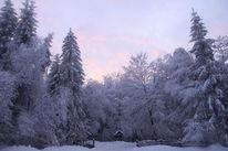 Schnee, Osterwald, Deister, Dämmerung