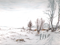 Winter, Frost, Natur, Landschaft
