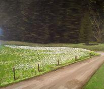 Wiese, Straße, Wald, Blumen