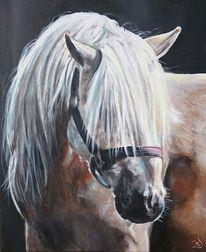 Pferde, Pferdekopf, Mähne, Malerei