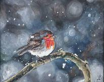 Rotkehlchen, Winter, Vogel, Schnee