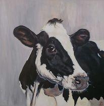 Milchkuh, Schwarz weiß, Vieh, Kuh