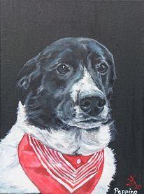 Hundekopf, Portrait, Hund, Halstuch