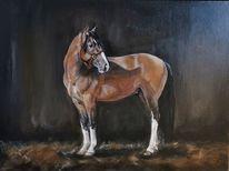 Pferde, Pony, Criollo, Malerei