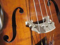 Bass, Instrument, Kontrabass, Musikinstrument