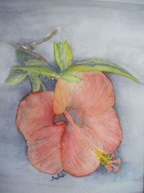 Blumen, Blüte, Aquarellmalerei, Malerei