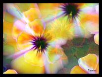 Digital, Abstrakt, Blumen, Hibiskus