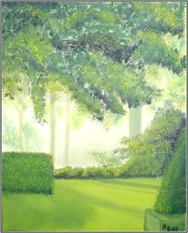 Sonne, Hecke, Natur, Baum