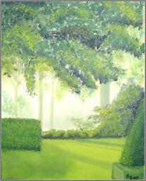 Natur, Baum, Park, Grün