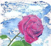 Garten, Rose, Blumen, Natur