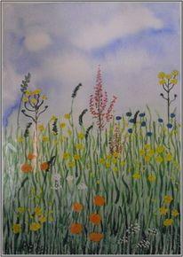 Natur, Wiese, Wiesenblumen, Aquarell