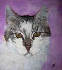 Katze, Hell, Malerei, Tiere