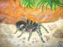 Spinne, Malerei, Tiere