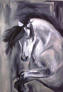 Acrylmalerei, Hengst, Pferde, Schwarz weiß