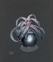 Cryptanthus, Buntstiftzeichnung, Angel, Flügel