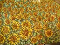 Freude, Sonnenblumen, Landschaft, Blumen