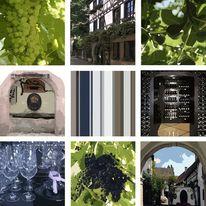 Weinlandschaft, Onlinegalerie, Wandbild, Wein