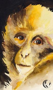 Affe, Zoo, Aquarellmalerei, Malerei
