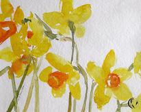 Blumen, Nordfriesland, Meer, Narzissen