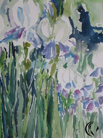 Aquarellmalerei, Iris, Weiß, Blumen