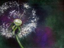 Blumen, Malen am meer, Pastellmalerei, Malerei