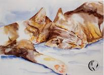 Aquarellmalerei, Katze, Naßtechnik, Malerei