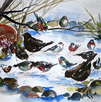 Schnee, Vogel, Aquarellmalerei, Malerei