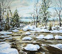 Wasser, Wald, Natur, Schnee winter landschaft