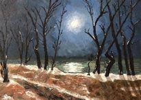 Landschaft, Nacht, Winter, See