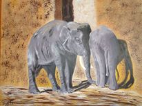 Afrika, Elefant, Indien, Zoo