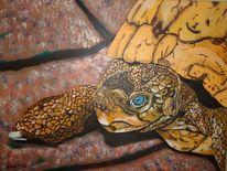 Griechenland, Tiere, Schildkröte, Echse